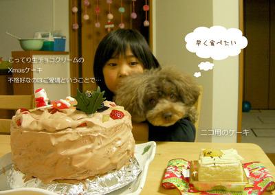 Xmas_cake_2011